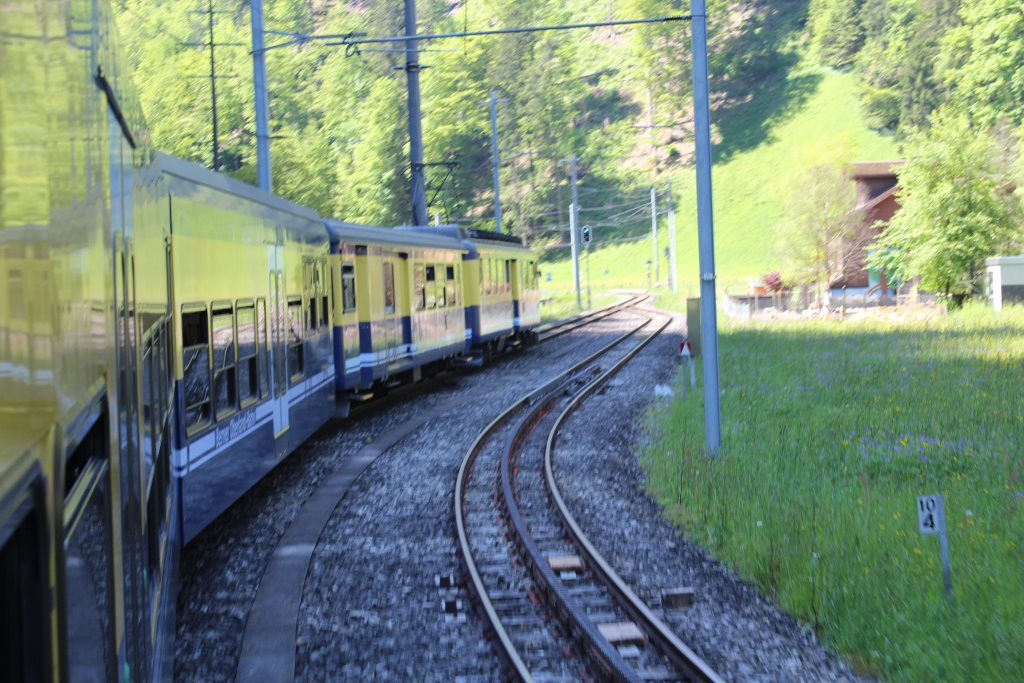 Who Likes Trains?-img_4785.jpg