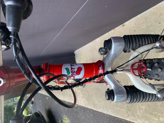 Circa 99 Cherry Bicycles Cherry Bomb!-img_4799.jpg