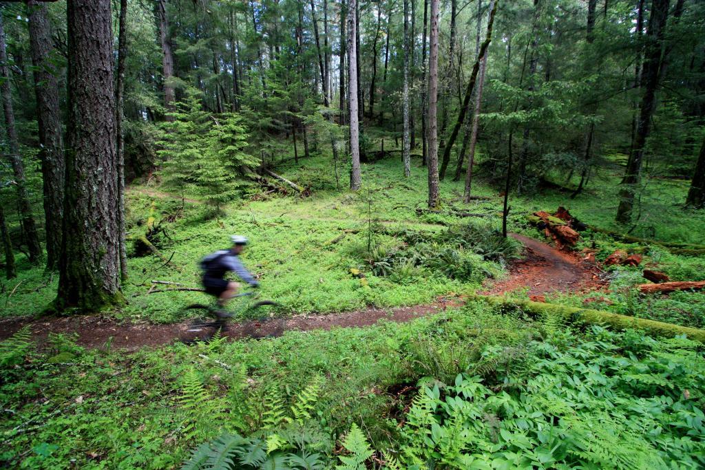 Your 3 best biking photos of 2011-img_4831.jpg