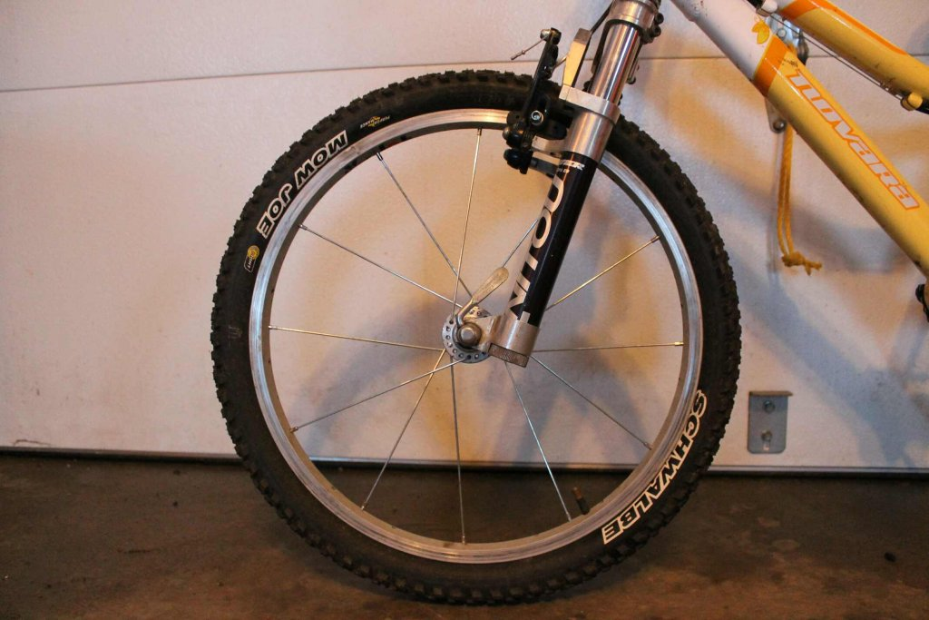 Kid specific Wheel Build for 40lb rider    NEED HELP-img_4903.jpg