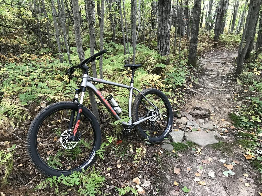 The All Mountain Hardtail Thread. Post up yours.-img_5008.jpg