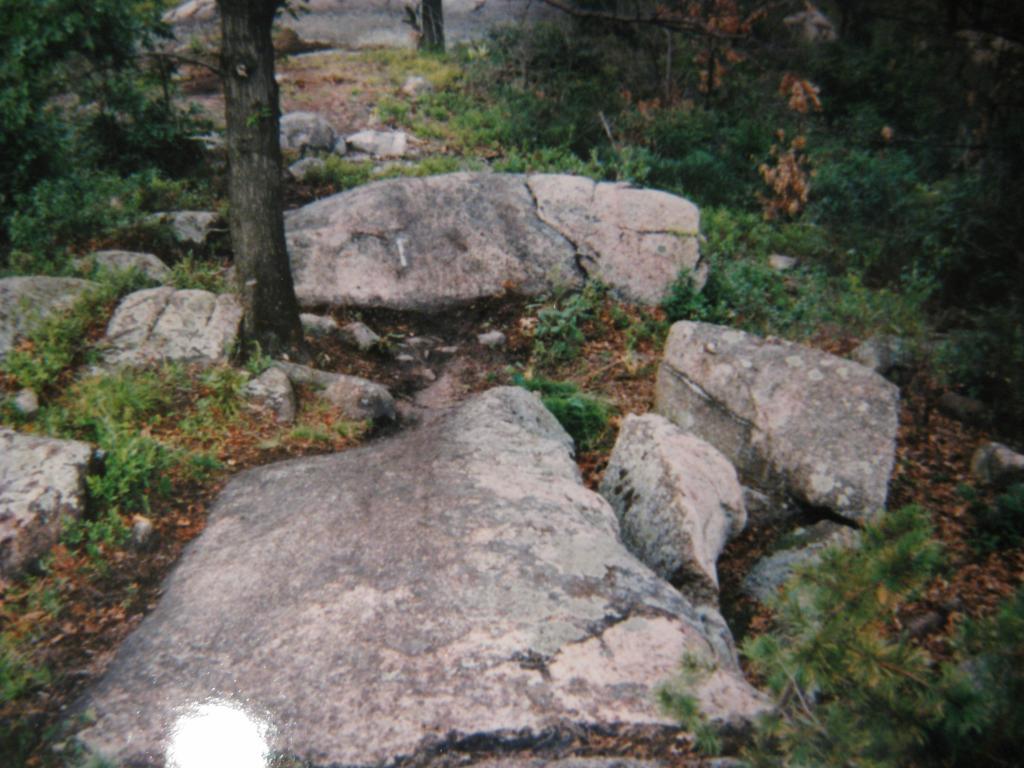 Original Bow Ridge pics???-img_5174.jpg