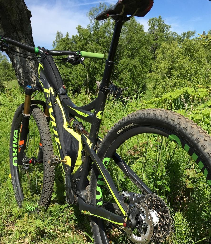 Oxive Carbon Rims and Wheels-img_5258s.jpg