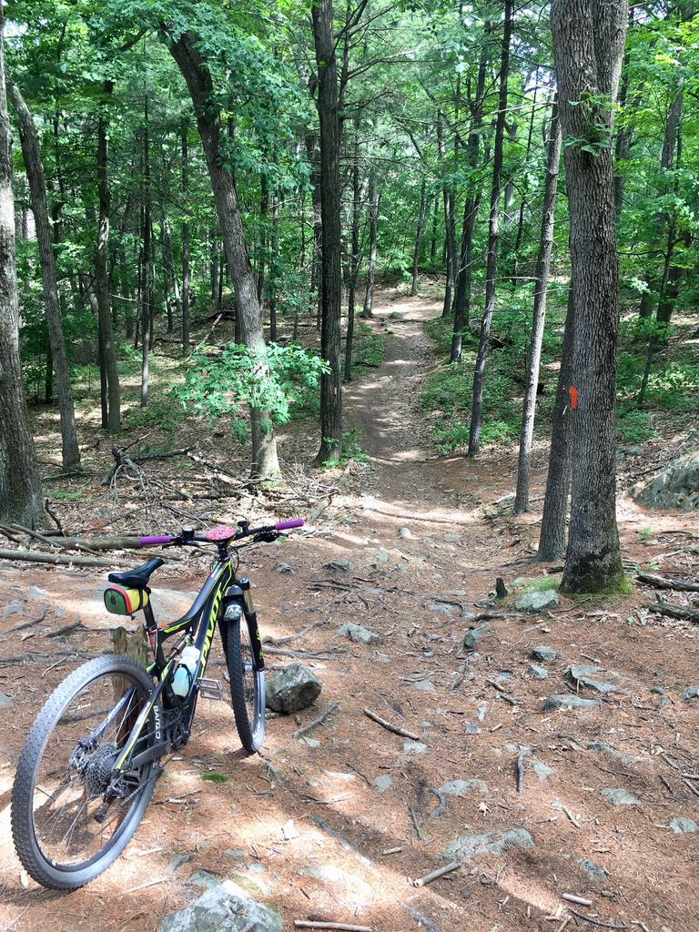 Did you ride in Massachusetts today?-img_5401.jpg