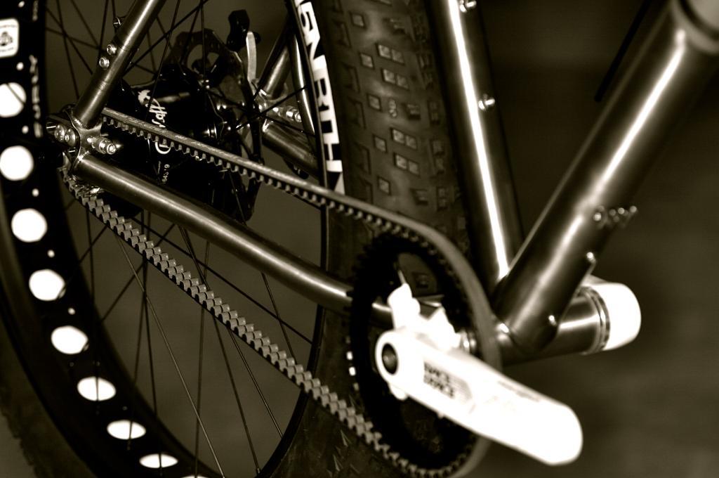 New Fatback frame, meet new carbon belt drive system.-img_5597.jpg