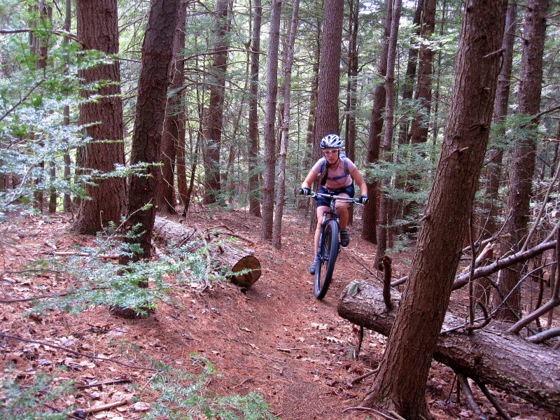MA Trails Picture Thread-img_5721.jpg