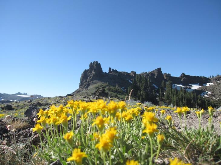 Thunder Mountain / Horse Canyon-img_5734.jpg