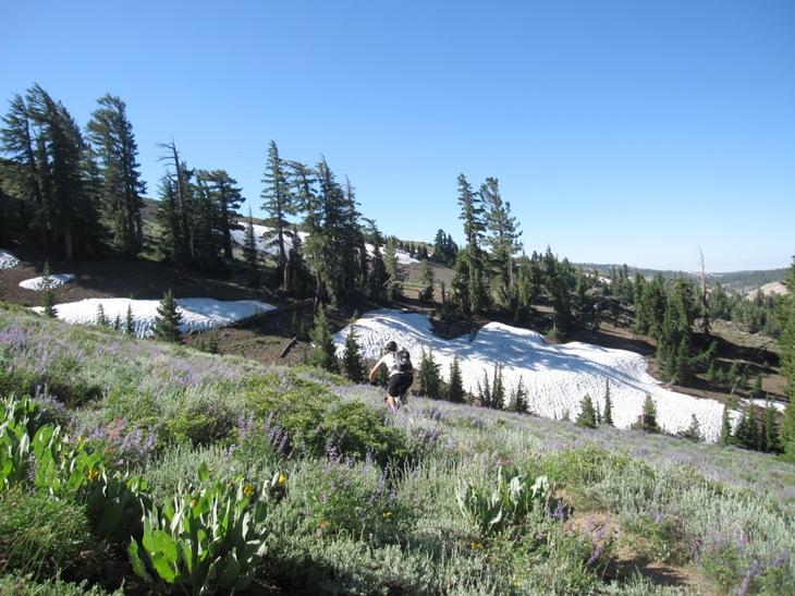 Thunder Mountain / Horse Canyon-img_5745.jpg