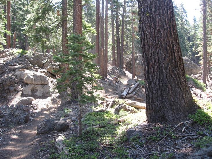 Thunder Mountain / Horse Canyon-img_5778.jpg