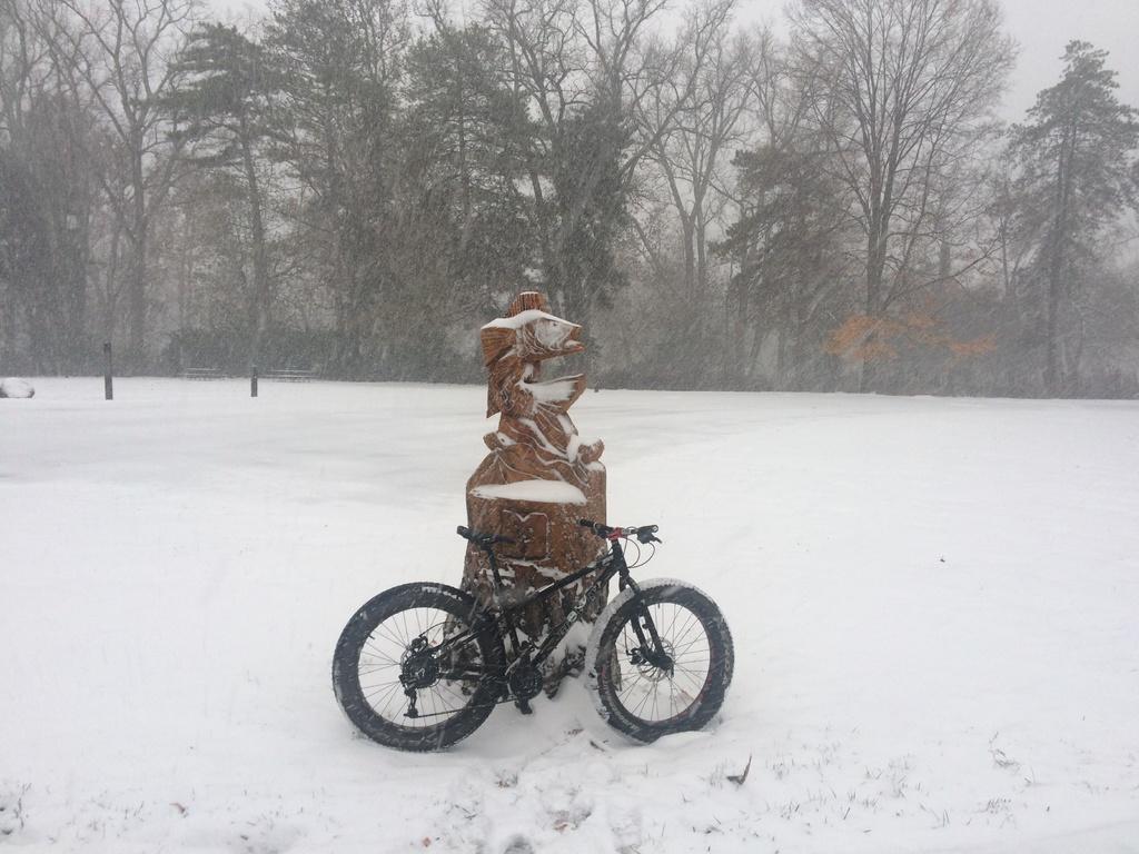 Fat Biking and health-img_5780.jpg