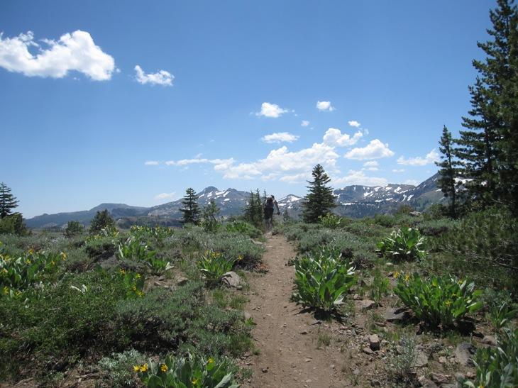 Thunder Mountain / Horse Canyon-img_5784.jpg