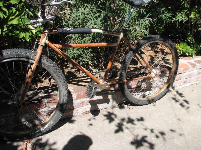 Another Yard Sale Score-Mystery Klunker Bike-Help Identify Please-img_5853.jpg