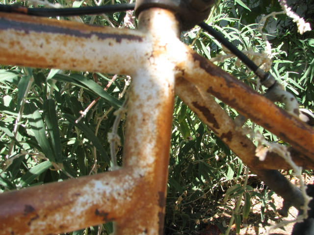 Another Yard Sale Score-Mystery Klunker Bike-Help Identify Please-img_5856.jpg
