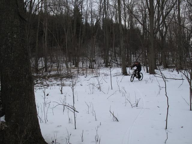 Local Trail Rides-img_5880.jpg