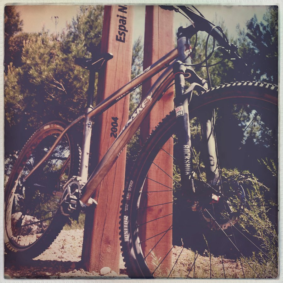 Post your Titanium 29ers-img_5896.jpg