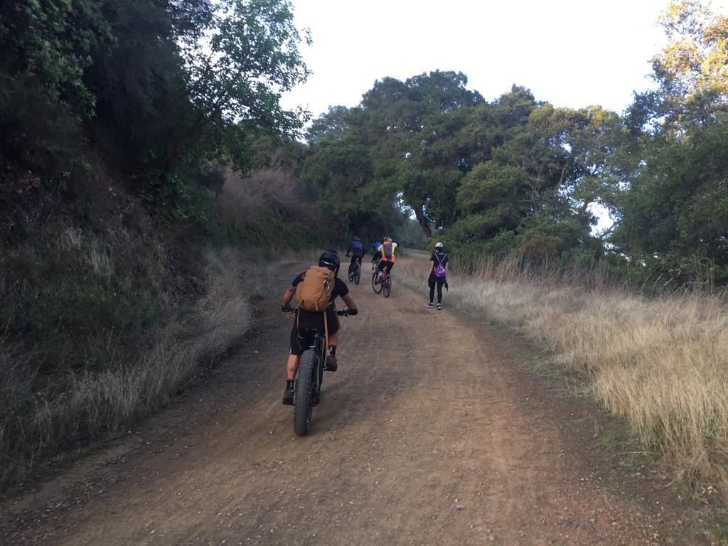 2017 Los Gatos Turkey Day Ride-img_5928.jpg