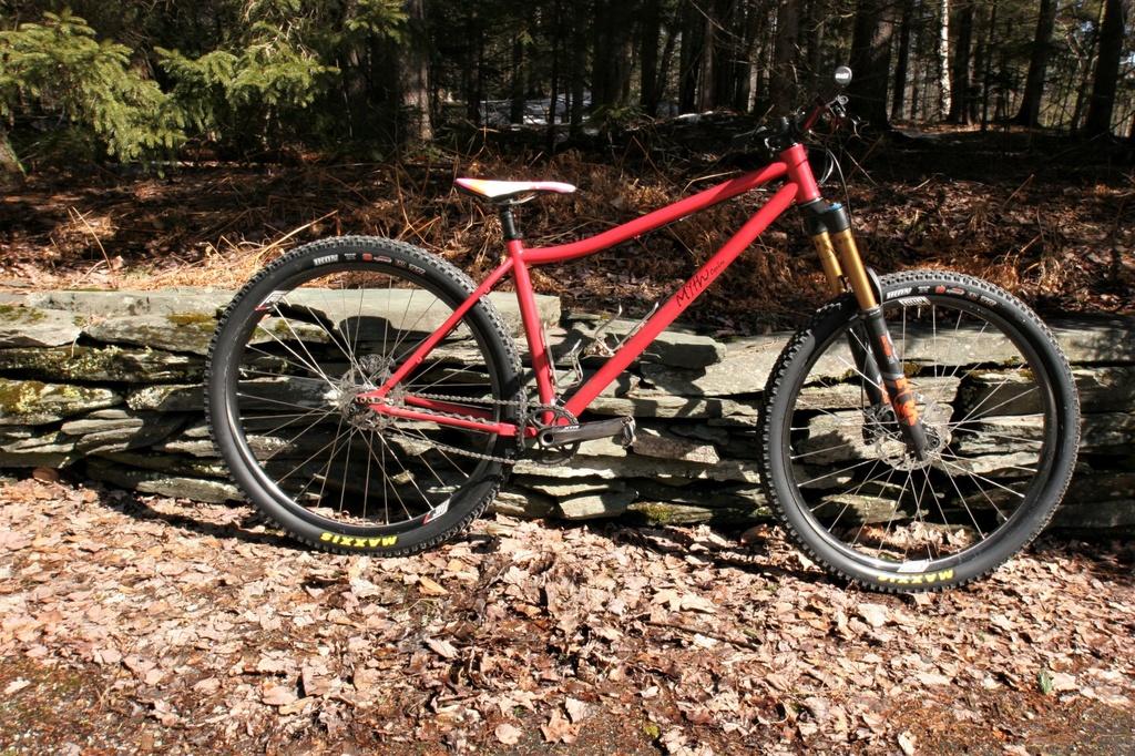 singlespeed bikes and frames 2019-20-img_5935.jpg