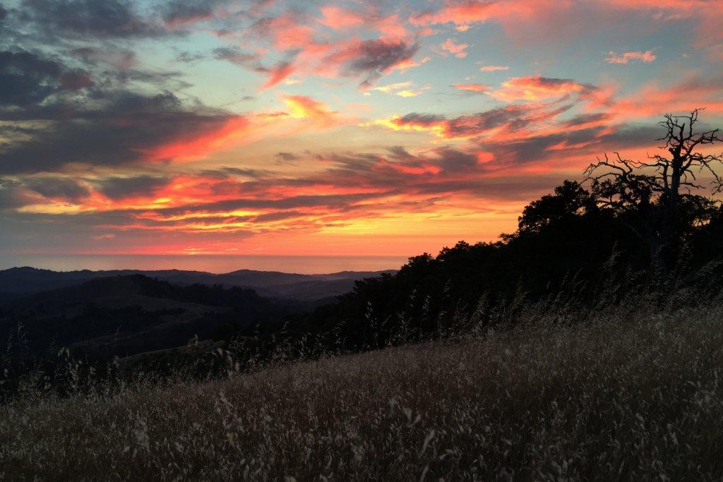 Sunrise or sunset gallery-img_6008.jpg