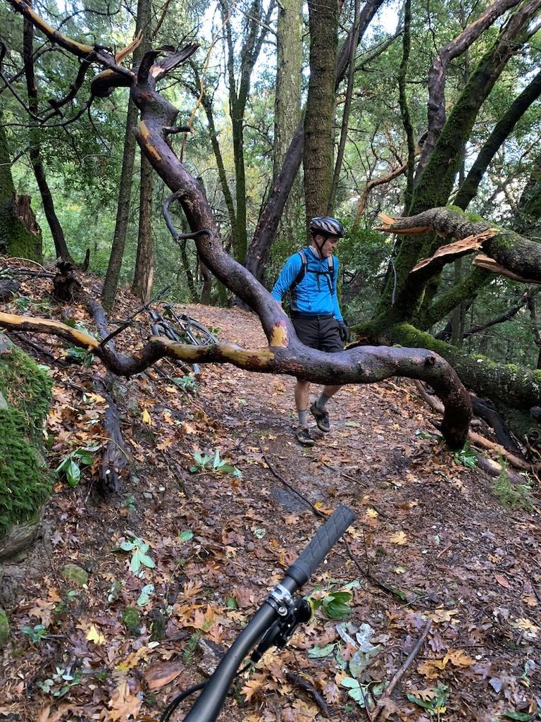 Nov 30-Dec 2, 2018 Weekend Rain and Trails Report-img_6015.jpg