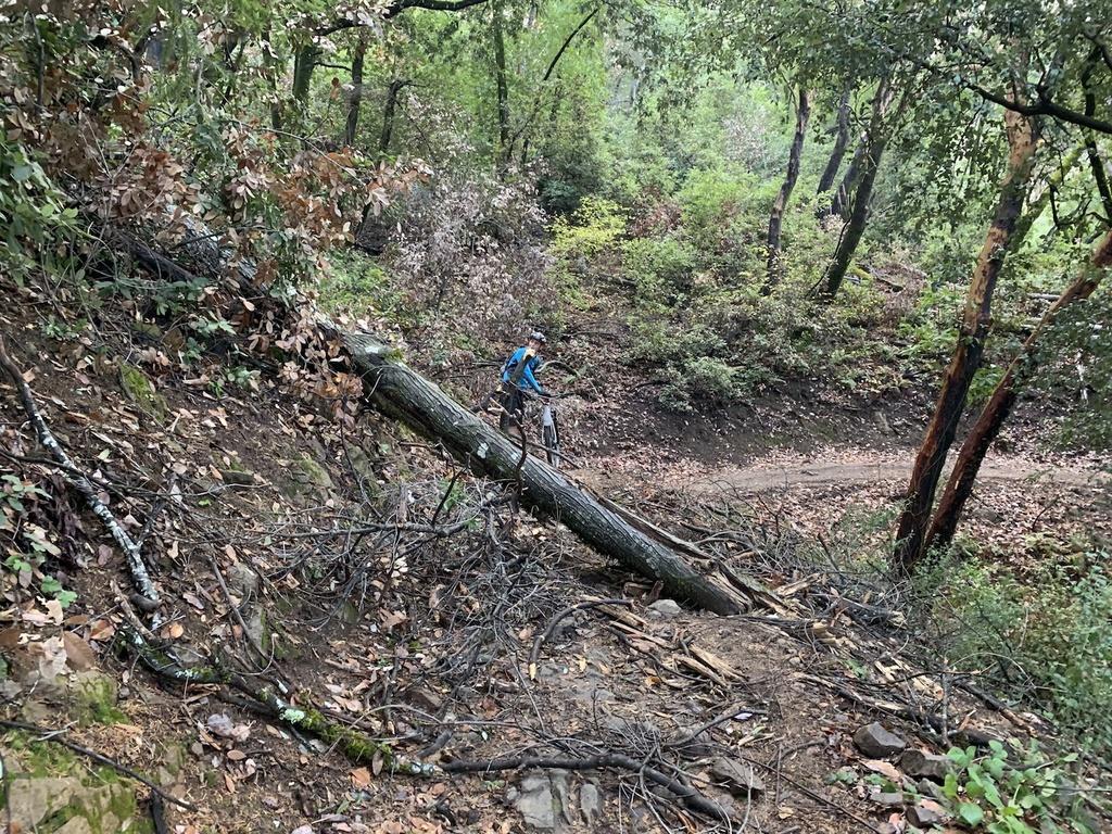 Nov 30-Dec 2, 2018 Weekend Rain and Trails Report-img_6016.jpg