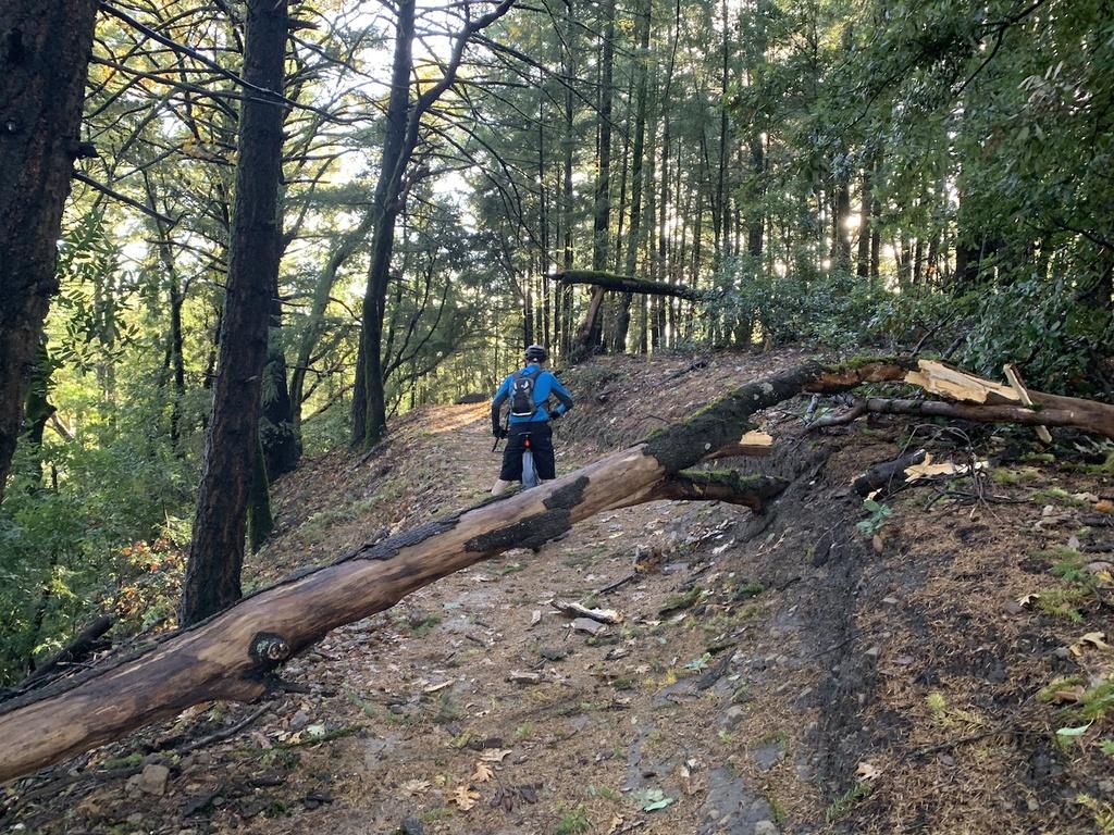 Nov 30-Dec 2, 2018 Weekend Rain and Trails Report-img_6018.jpg
