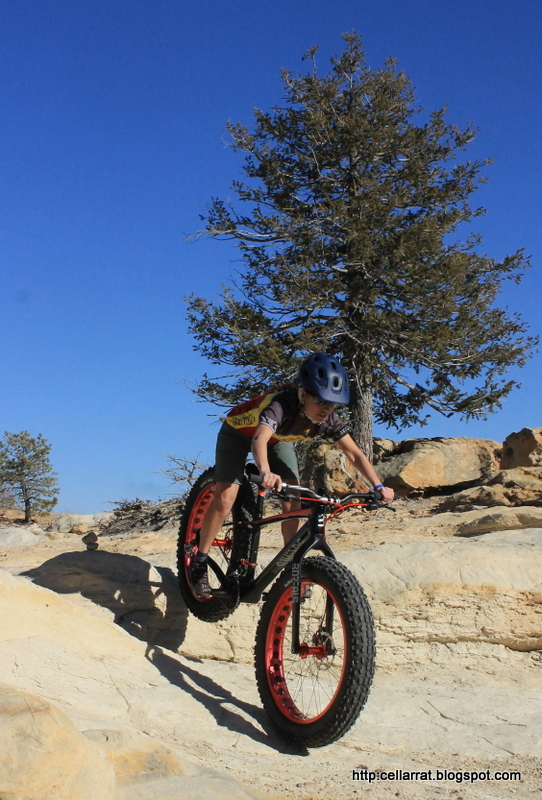 New job, new trails, passion reignited....-img_6041.jpg