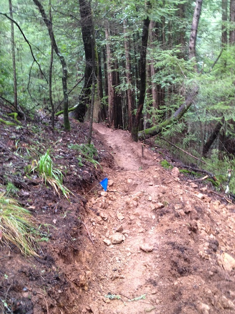 Tamarancho Flow Trail Party - if you live in the Bay Area you should show up-img_6295.jpg