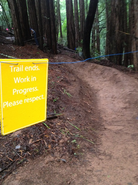 Caught the Flow Trail Vandal - what do I do now?-img_6307.jpg