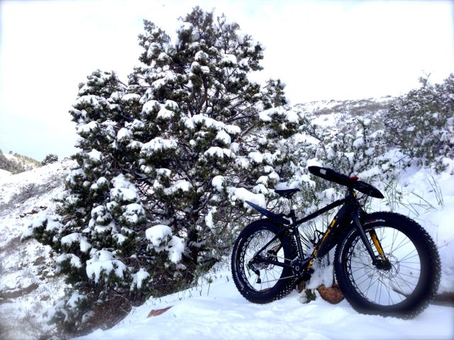 Specialized Fat Boy:  How I went tubless-img_6339.jpg