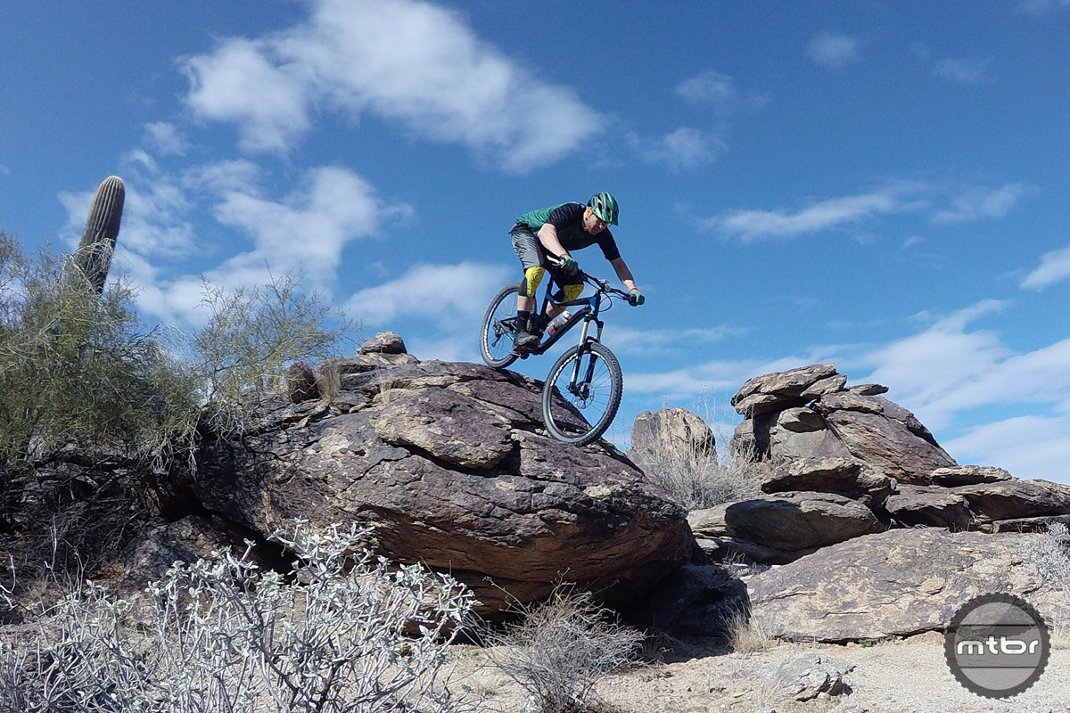 Cactus plants and option lines rule the day in South Mountain.