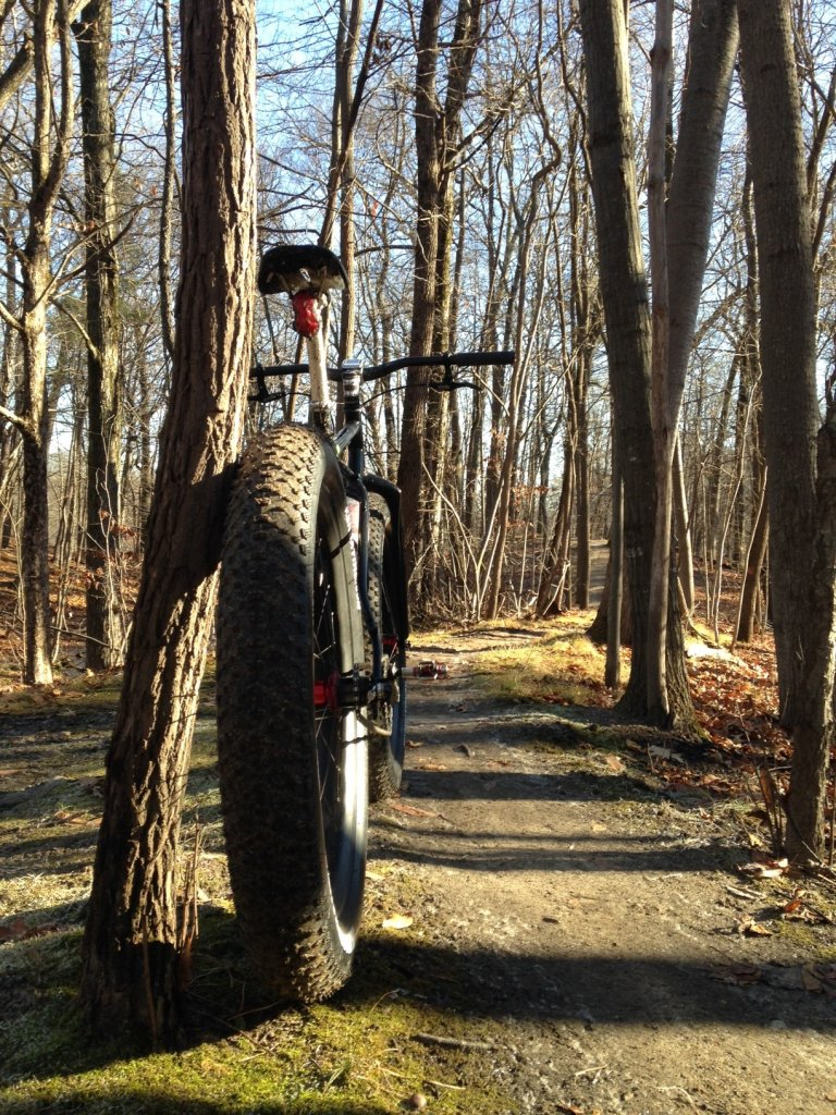 How much does a Fat Bike weigh?-img_6465.jpg