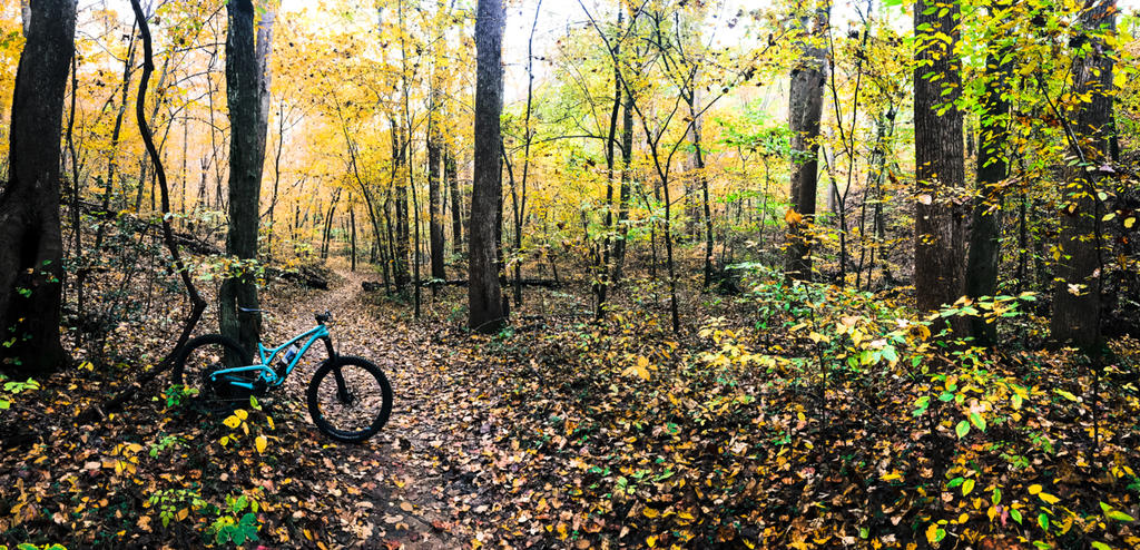 Which to choose; Evil Calling or Following MB for RI singletrack ?-img_6480.jpg