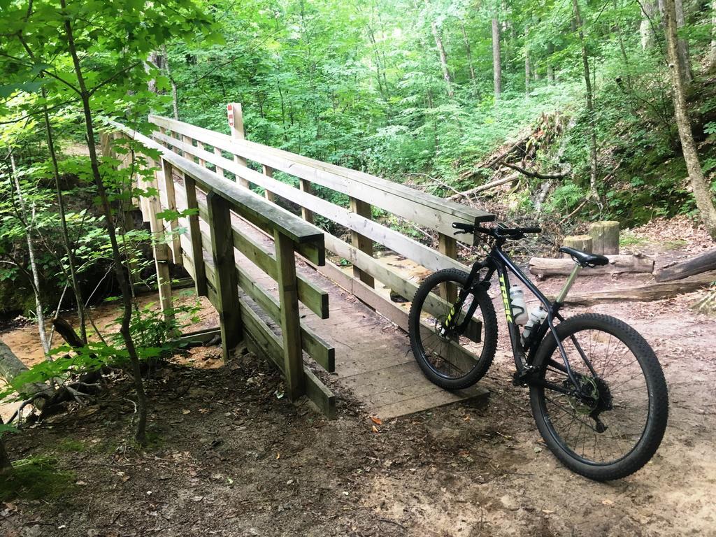 bike +  bridge pics-img_6532a.jpg
