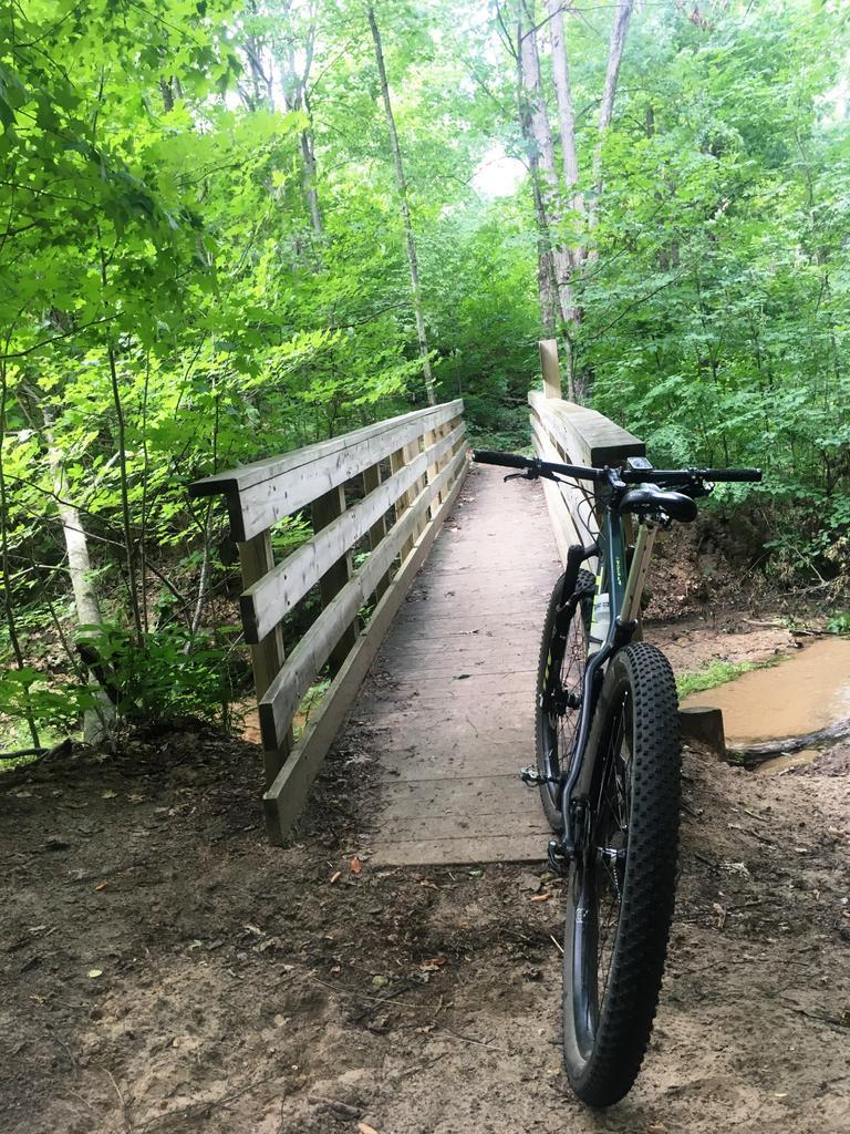 bike +  bridge pics-img_6535a.jpg