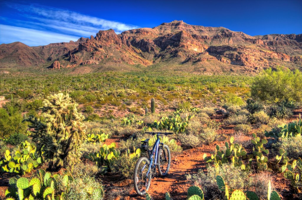 AZ Photo Friday - Nov. 1st - AZ Rocks Edition-img_6555-large-.jpg