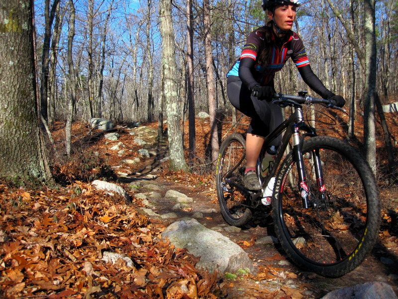 Douglas State Forest Trail Conditions?-img_6565.jpg