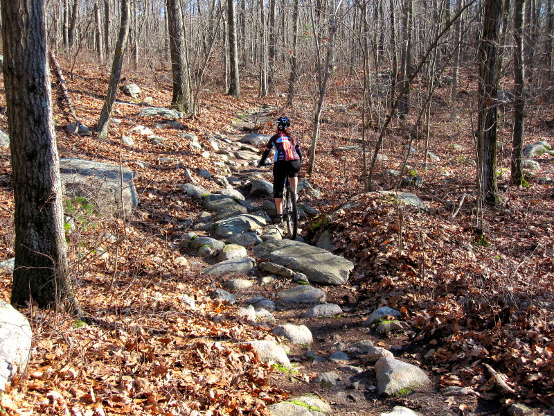 MA Trails Picture Thread-img_6566.jpg