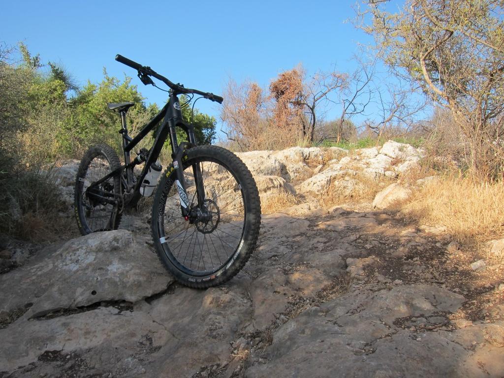 Wheels for bike park - Riot-img_6579.jpg