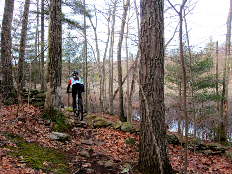 MA Trails Picture Thread-img_6613.jpg