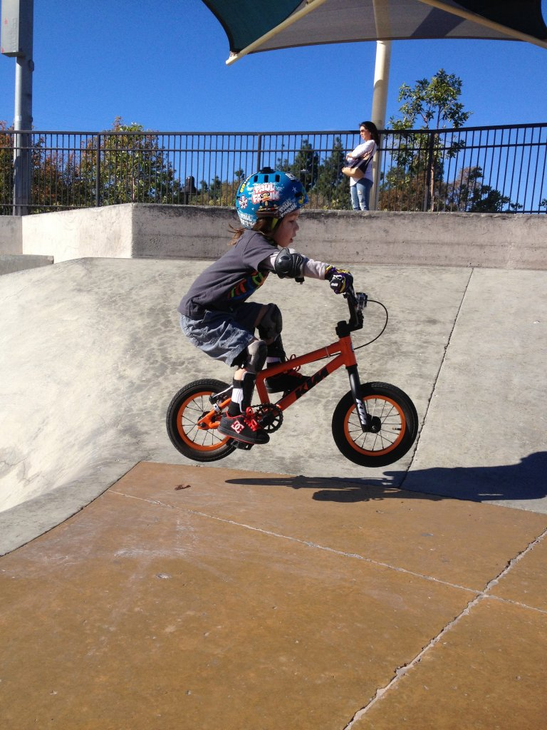 V Brake Install on Specialized Hotwalk Balance Bike-img_6642.jpg