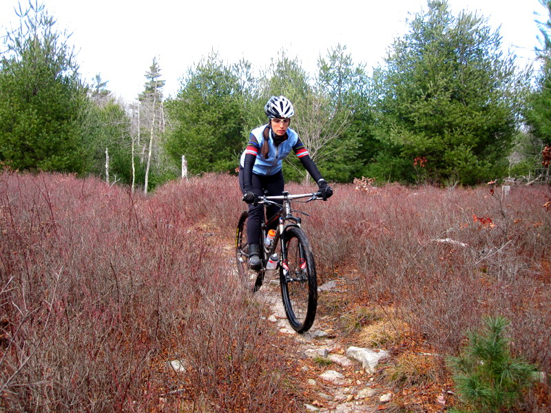 MA Trails Picture Thread-img_6656.jpg