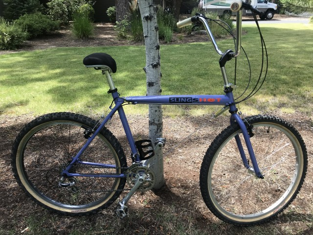 Official Slingshot Bikes Thread-img_6682.jpg