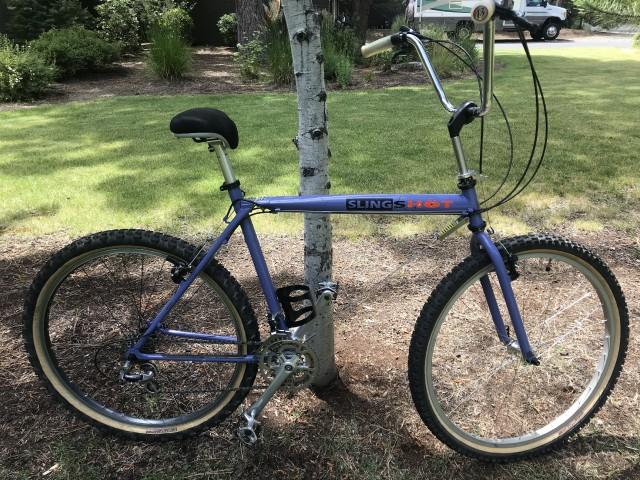 Official Slingshot Bikes Thread-img_6682.jpg