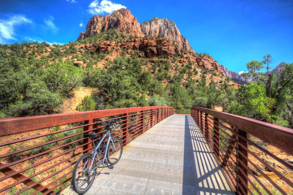 bike +  bridge pics-img_6817_8_9-large-.jpg