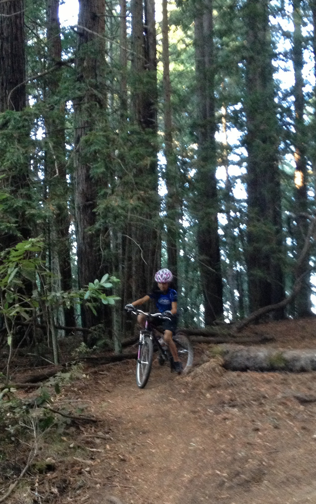 Riding real singletrack in the redwoods