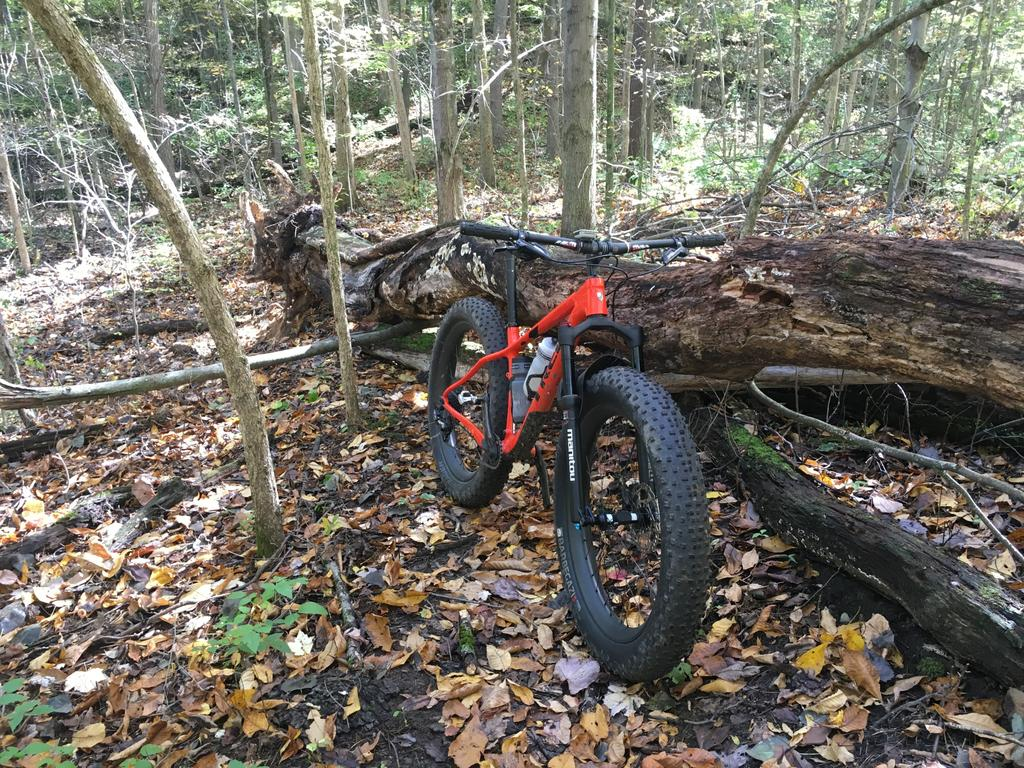 did you ride today?-img_6984c.jpg