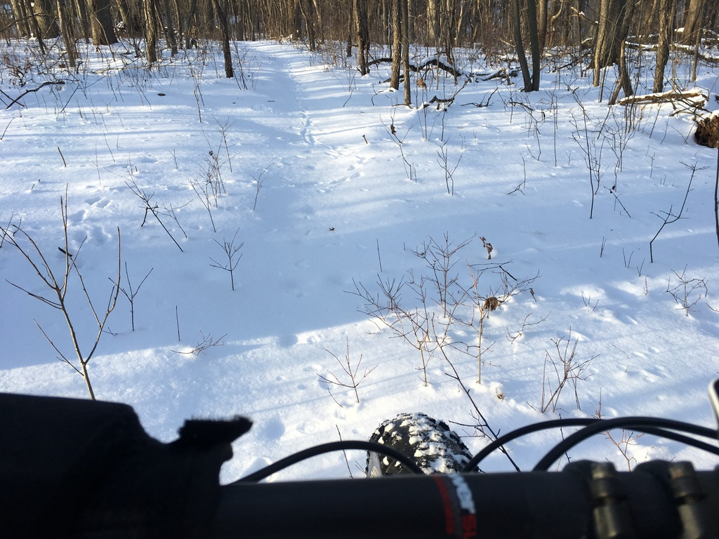 Snow and ice riding picture thread.-img_7502a.jpg