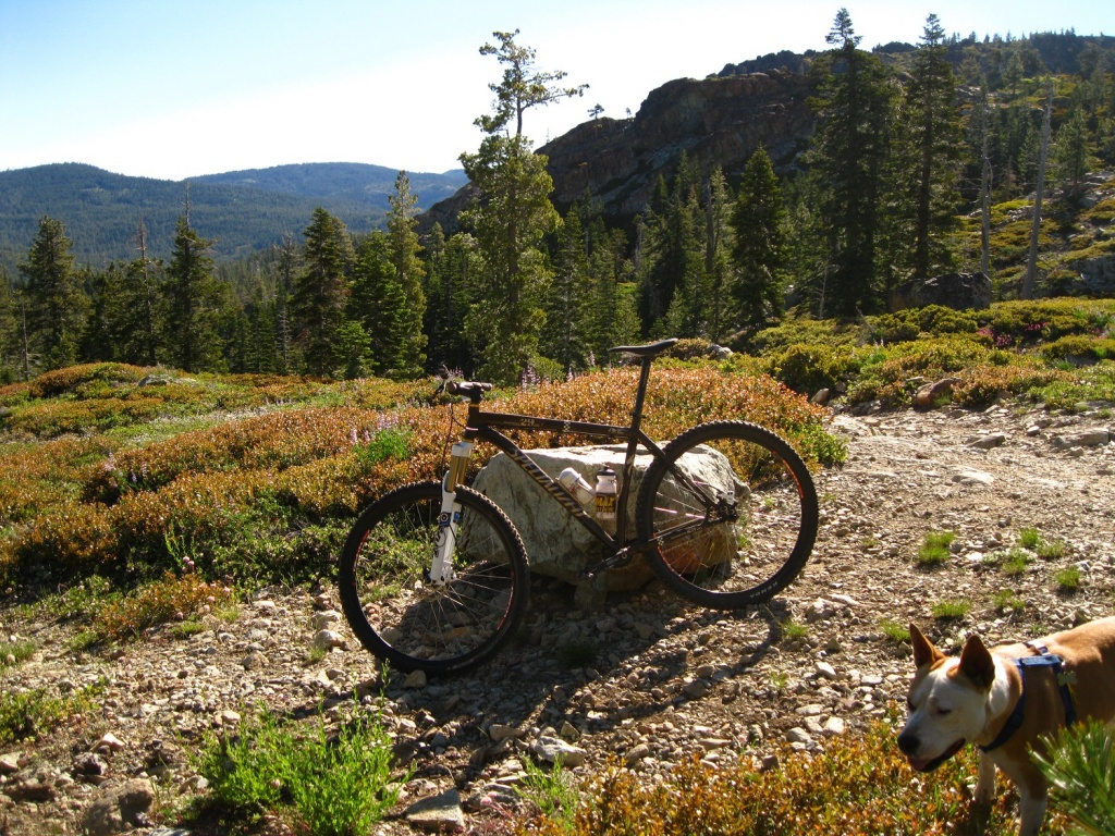 Downieville Gathering is almost here. June 24-26-img_7583.jpg