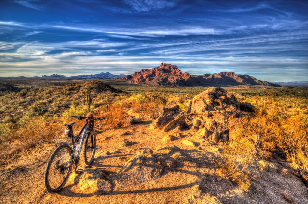 did you ride today?-img_7730_1_2-large-.jpg