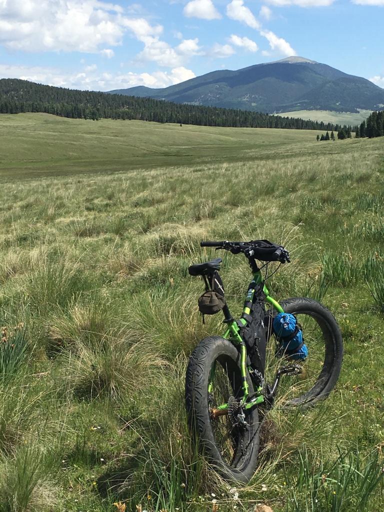The NM Trail Pix Thread-img_7872.jpg